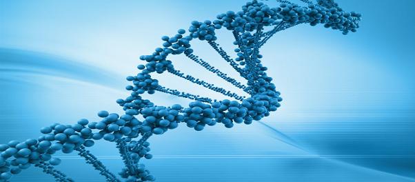 Patrones de herencia genética